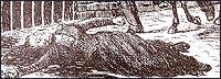 Тялото на Елизабет Страйд