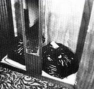 Торбите с човешки останки