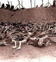 Жертви на Холокоста