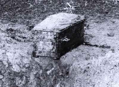 """Ковчегът на Чаплин, намерен в царевична нива на около 20 км от Лозана. Снимка в. """"24 часа"""" - Лозана"""