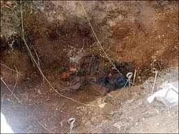 Урвата, в която са открити костите на момчетата