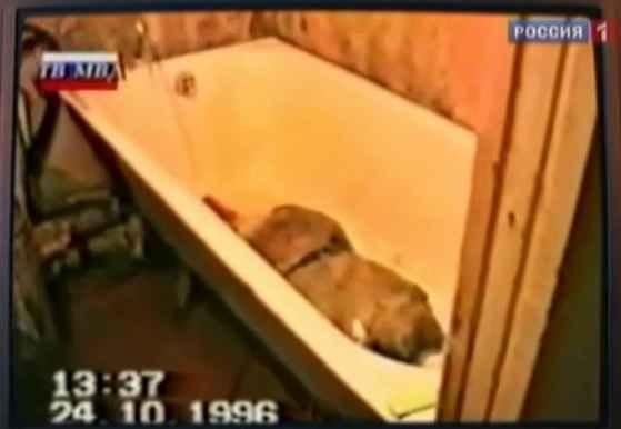 Разчленен труп във ваната на Спесивцев
